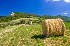Green landscape, field and church Royalty Free Stock Photo