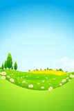 Green Landscape with  Flowers Royalty Free Stock Photos
