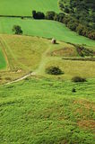 Green landscape with hunting shelter Royalty Free Stock Image