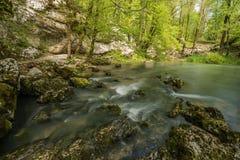 Green landscape and karst spring in national park Rakov Skocjan in Slovenia during spring time Royalty Free Stock Image