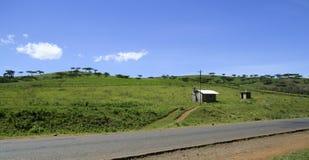 Green landscape in Kenya, Africa royalty free stock photo
