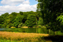 Green Landscape, Lake and Blue Sky in the Park Royalty Free Stock Images