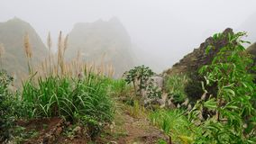Green landscape with mist flowing over huge mountain slopes. Lush vegatation of Santo Antao high plain. 4K footage Cape. Verde Cabo Verde stock video footage