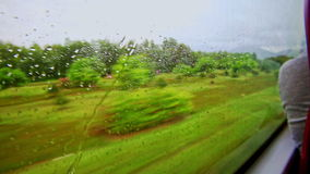 Green Landscape Through Moving Train Window with Rain Drops stock video