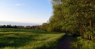 Green landscape near Kokorin castle Royalty Free Stock Photo