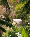 Green landscape with palms and white sand rocks, fairy stream vi Stock Photography