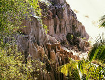 Green landscape with palms and white sand rocks, fairy stream vi Stock Image