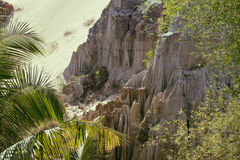 Green landscape with palms and white sand rocks Royalty Free Stock Photo