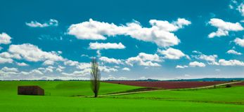 Green landscape in the province of Soria. Spain Stock Photography
