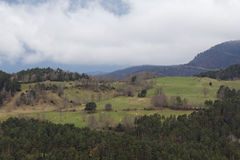 Green landscape in the Pyrenees Stock Images