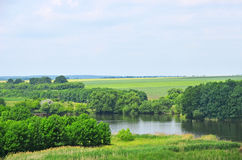 Green landscape with river and tree Stock Photography