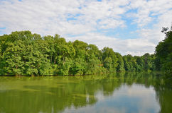 Green landscape with river and tree Stock Photos