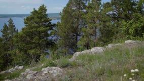 Green landscape of rocky coastline stock video