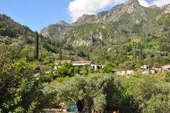 Green landscape on samos island, greece Royalty Free Stock Photo