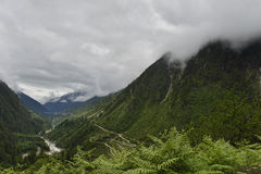 Green Landscape of Sikkim  Stock Images
