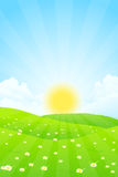 Green Landscape with Sun Royalty Free Stock Image