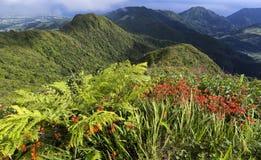Green landscape on top of Miradouro do Salto do Cavalo in Sao Miguel, Azores Islands, Portugal. Stock Image
