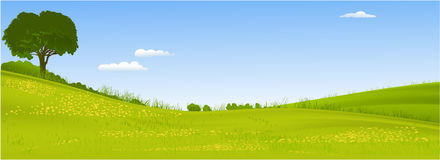 Green landscape with  tree Stock Photos