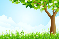 Green Landscape with  Tree Royalty Free Stock Photo