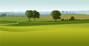 Green landscape with trees vector illustration