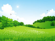 Green Landscape with trees, clouds, flowers Royalty Free Stock Image