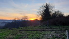 Green landscape and a sunset in the Belgian Ardennes. Green landscape and trees with a sunset in the Belgian Ardennes royalty free stock photos