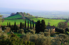 Green landscape, Tuscany Stock Photo