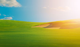 Green landscape during warm bright clear sky day Royalty Free Stock Images