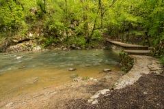 Green landscape and wooden bridge in national park Rakov Skocjan in Slovenia during spring time Royalty Free Stock Photos