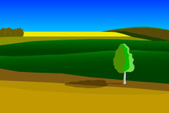 Green landscape. With yellow field and birch on foreground Royalty Free Illustration