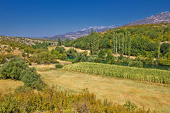 Green landscape of Zrmanja river valley Stock Photo