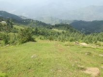 Green landscapes. In kashimr Stock Photography