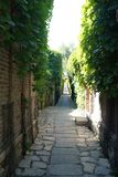 Green Lane in Beijing Old Town. A green lane in an old town of Beijing City royalty free stock photos