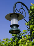 Green Lantern. Green colored streetlight hat-look lantern supported by curved shape metal circular hollow pipe in the park and surrounded by greens to light up Stock Image