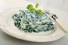 Green lasagna stock image