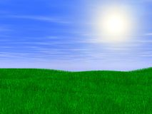 Green lawn. Scene of the green lawn on background solar sky Stock Images