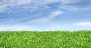 Green lawn against a friendly sky Royalty Free Stock Images