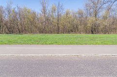 Green lawn with asphalt road and trees in big public park Royalty Free Stock Photography