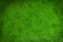 Green lawn for background Stock Photos