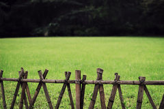 Green lawn behind wood fence Royalty Free Stock Images