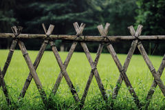 Green lawn behind wood fence Stock Photo