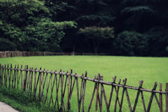 Green lawn behind wood fence Royalty Free Stock Photography