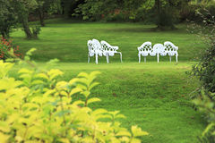 Green lawn with benches Royalty Free Stock Photography