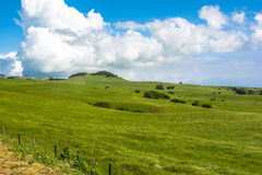 The green lawn in Big Island, Hawaii Stock Photos