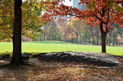 Green lawn in Central Park. In New York City, Fall Royalty Free Stock Images