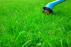 Green Lawn Closeup And  Corded Grass Trimmer In The Background Stock Image