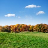 Green lawn and colorful autumn trees Stock Photos