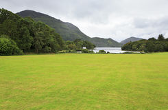 Green lawn in front of Muckross Lake. Stock Images