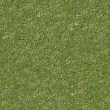 Green Lawn Grass. Seamless Texture. Royalty Free Stock Image