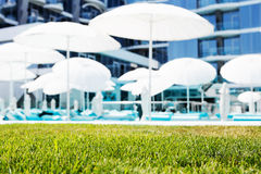 Green lawn on hotel beach background with deck chairs and umbrel Stock Images